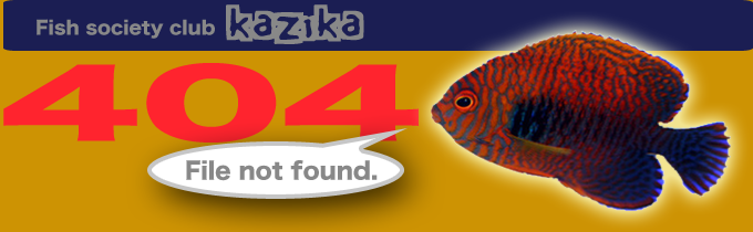 Fish society club kazika 404 File not found.